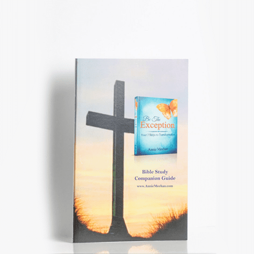 Be The Exception: Bible Study Companion Guide