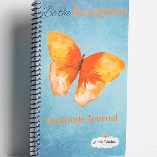Annie Meehan, Be the Exception: Gratitude Journal